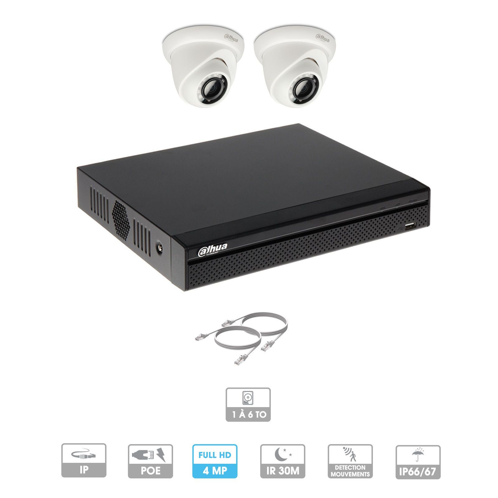 Kit vidéosurveillance 2 caméras | 4 MP | IP PoE | 2 câbles RJ45 20/30/40/50 mètres | 1 HDD 1 à 6 To | Dôme Dahua