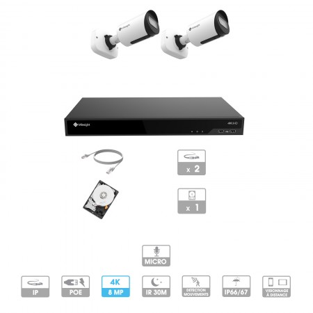 Kit vidéosurveillance 2 caméras | 4K | IP PoE | 2 câbles RJ45 20/30/40/50 mètres | HDD 1 à 6 To | Tube Milesight