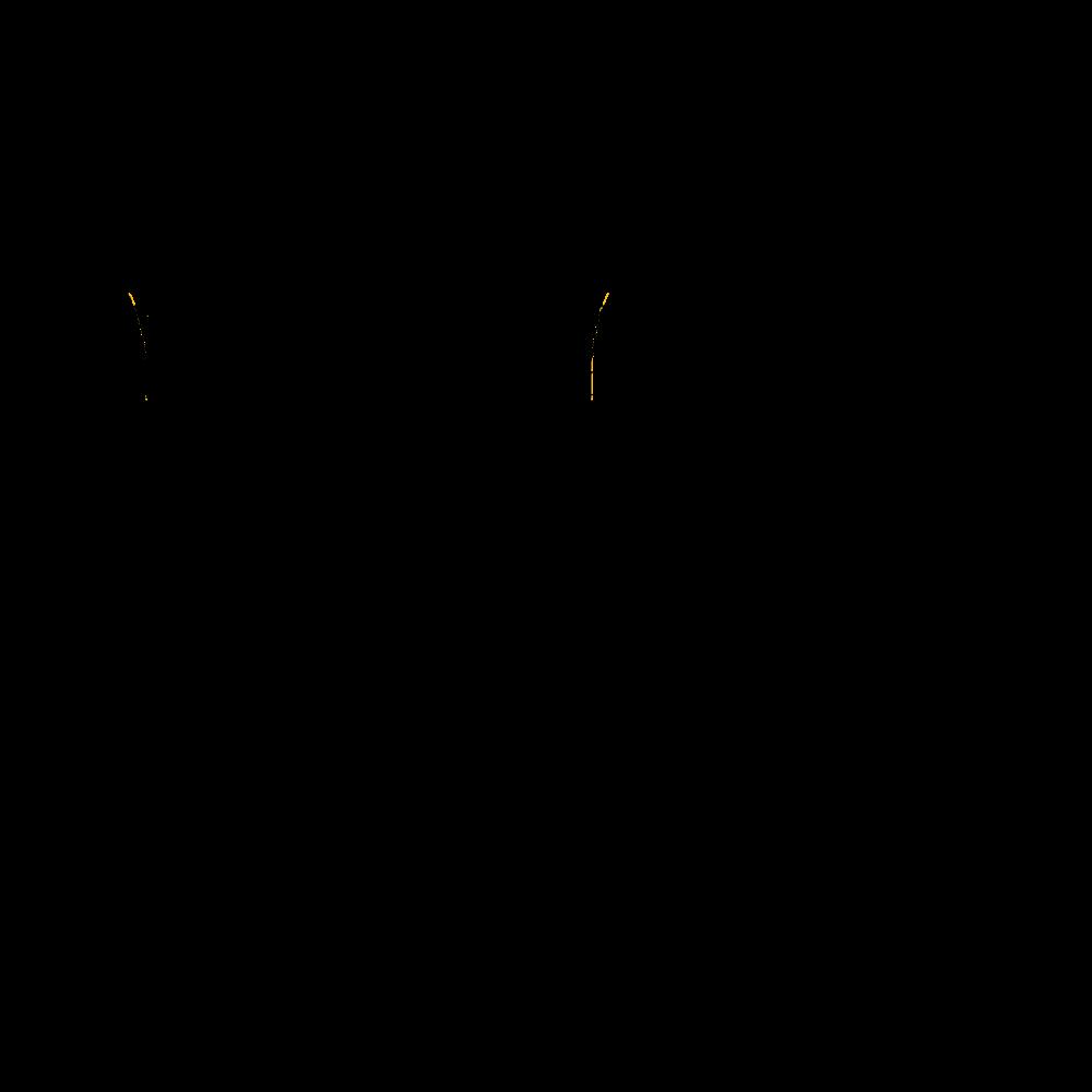DI-250AEVF_schema